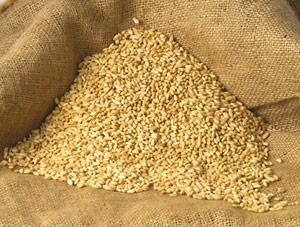 Keşkeklik Buğday